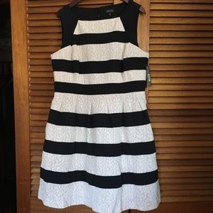 Tahari, white and black striped dress. With tags.